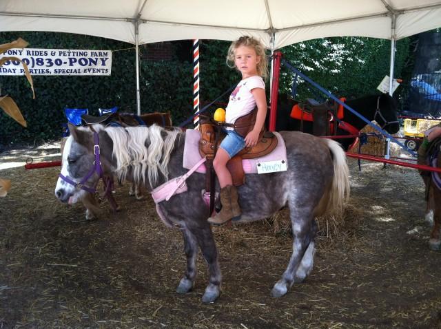 pony-rides-picnic-western-theme